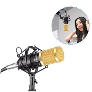 BM800 Condenser Microphone with Microphone Folding Stand